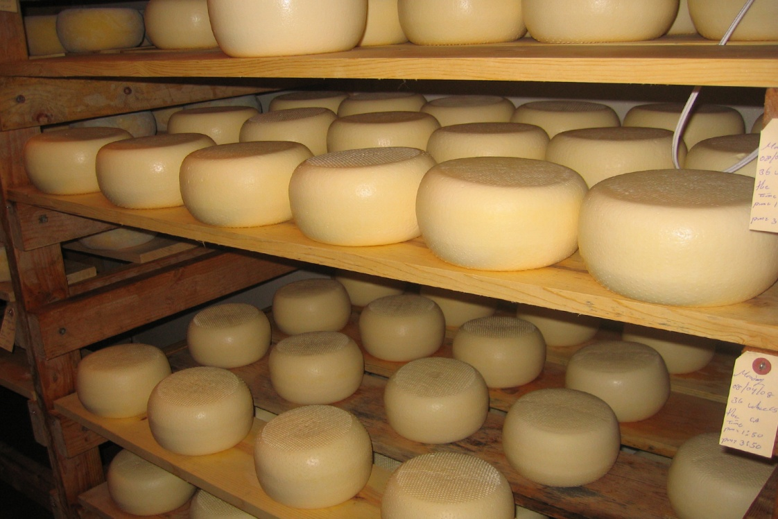 The Art and Craft of Cheese Making